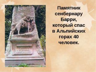 Памятник сенбернару Барри, который спас в Альпийских горах 40 человек.