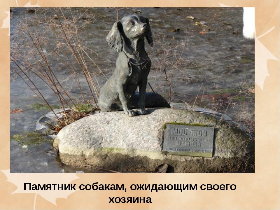 Памятник собакам, ожидающим своего хозяина