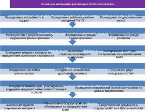 Основные механизмы реализации пилотного проекта