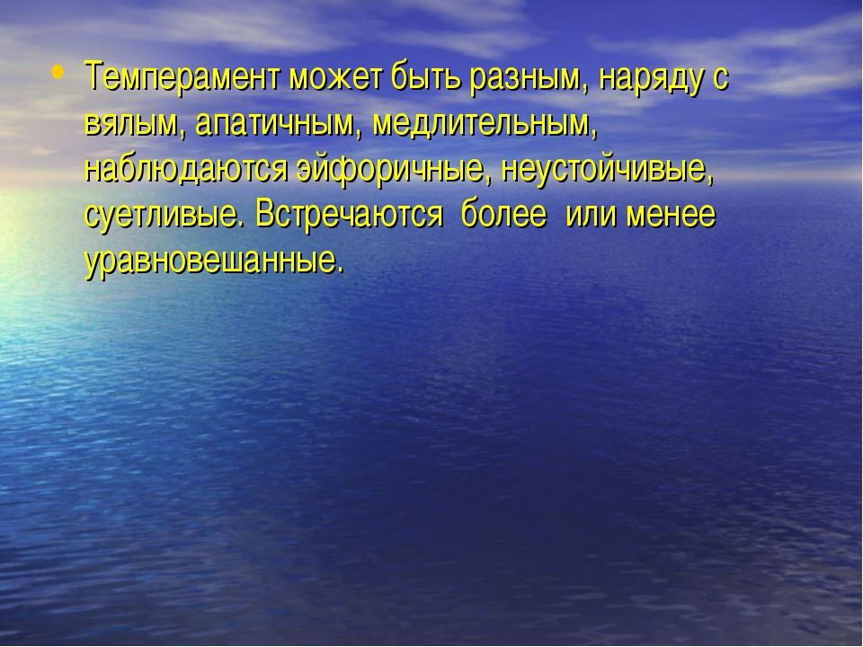 Темперамент может быть разным, наряду с вялым, апатичным, медлительным, наблю...