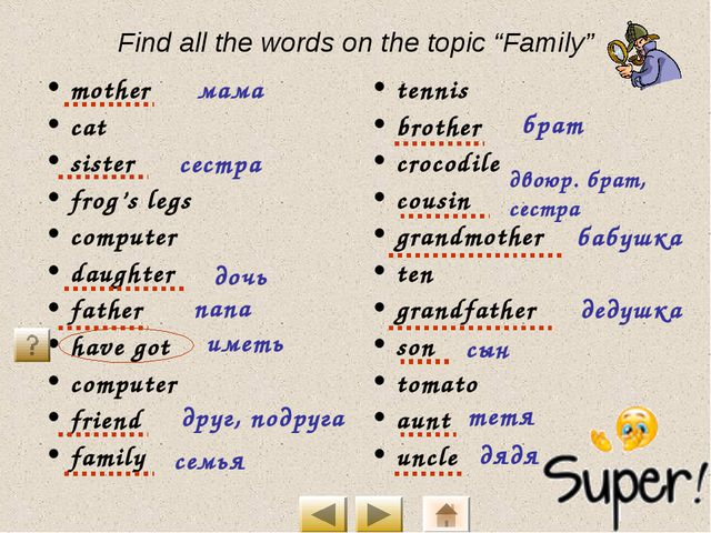 """Find all the words on the topic """"Family"""" mother cat sister frog's legs comput..."""
