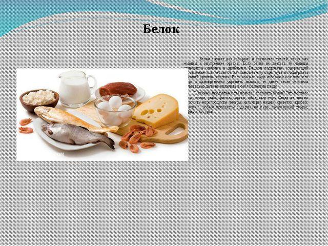 Белок Белки служат для «сборки» и «ремонта» тканей, таких как мышцы и внутрен...