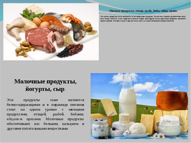 Мясные продукты, птица, рыба, бобы, яйца, орехи. Эта группа продуктов также н...