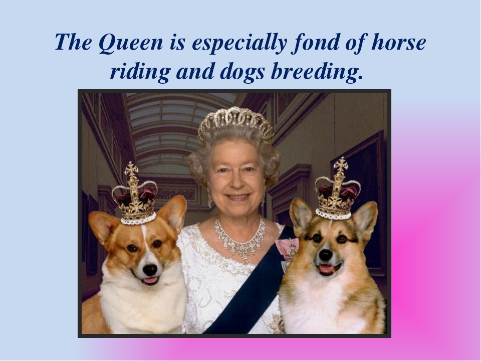 The Queen is especially fond of horse riding and dogs breeding.