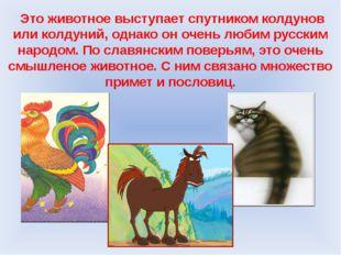 Это животное выступает спутником колдунов или колдуний, однако он очень люби