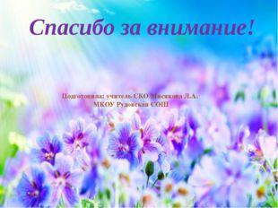 Спасибо за внимание! Подготовила: учитель СКО Мисякова Л.А. МКОУ Рудовская СОШ