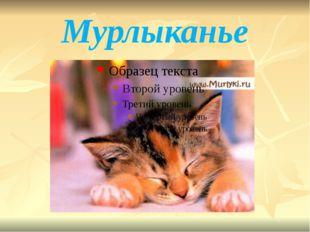Мурлыканье