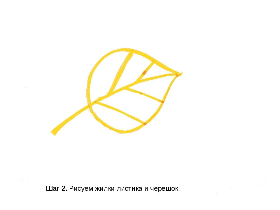 Шаг 2. Рисуем жилки листика и черешок.