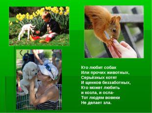 Кто любит собак Или прочих животных, Серьёзных котят И щенков беззаботных, Кт