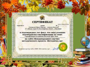 08011968253848 Синицыной Ирине Юрьевне – учителю биологии ГУ «Школы-лицей № 8
