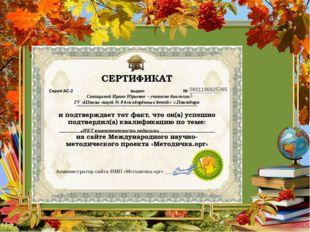 08011968253853 Синицыной Ирине Юрьевне – учителю биологии ГУ «Школы-лицей № 8