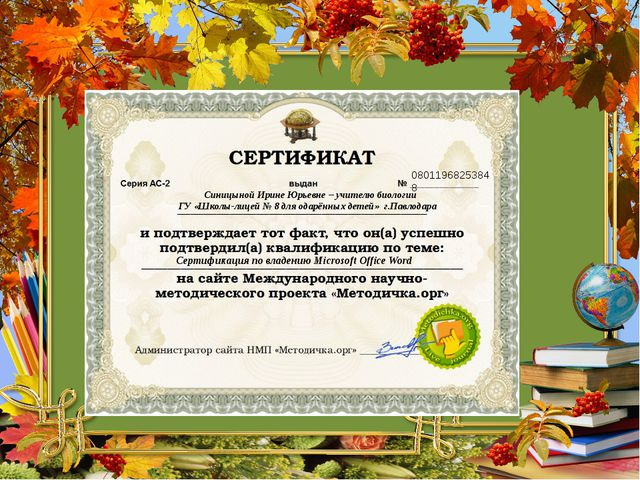08011968253848 Синицыной Ирине Юрьевне – учителю биологии ГУ «Школы-лицей № 8...