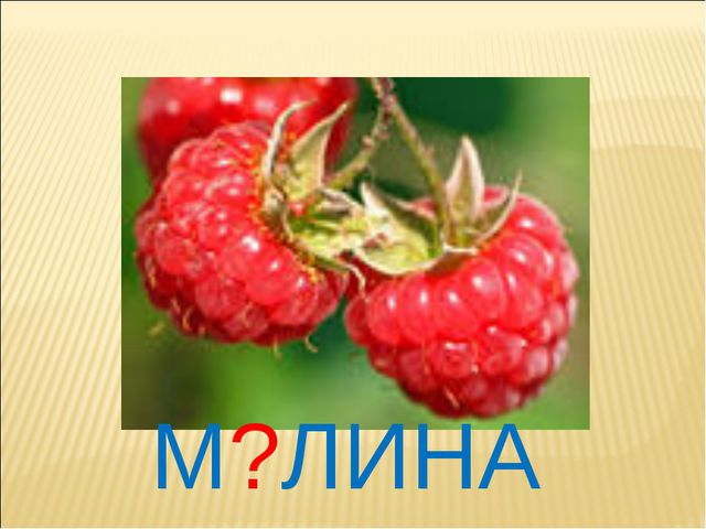 М?ЛИНА