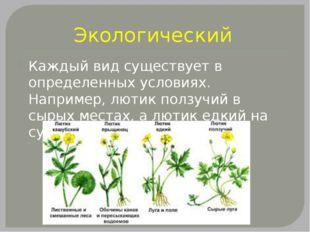 Экологический Каждый вид существует в определенных условиях. Например, лютик