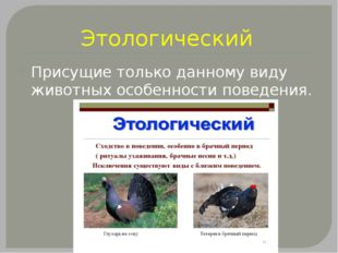 Этологический Присущие только данному виду животных особенности поведения.