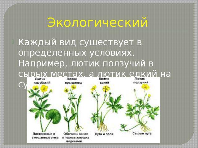 Экологический Каждый вид существует в определенных условиях. Например, лютик...