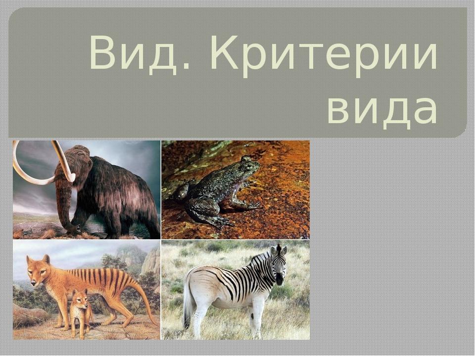Вид. Критерии вида