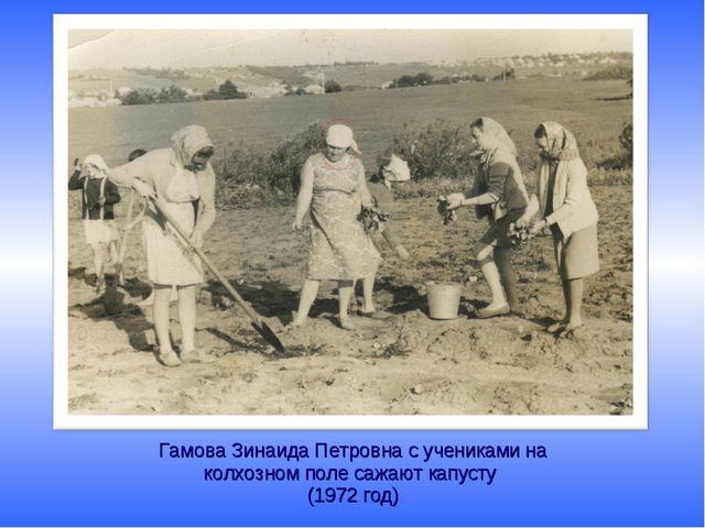 Гамова Зинаида Петровна с учениками на колхозном поле сажают капусту (1972 год)