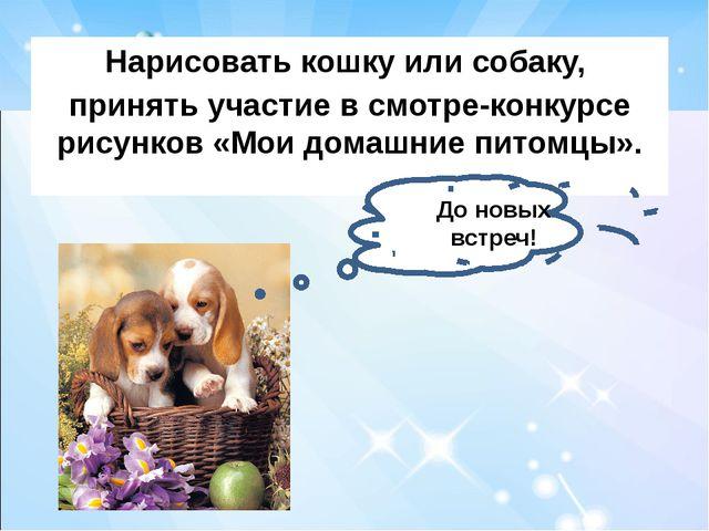 Нарисовать кошку или собаку, принять участие в смотре-конкурсе рисунков «Мои...