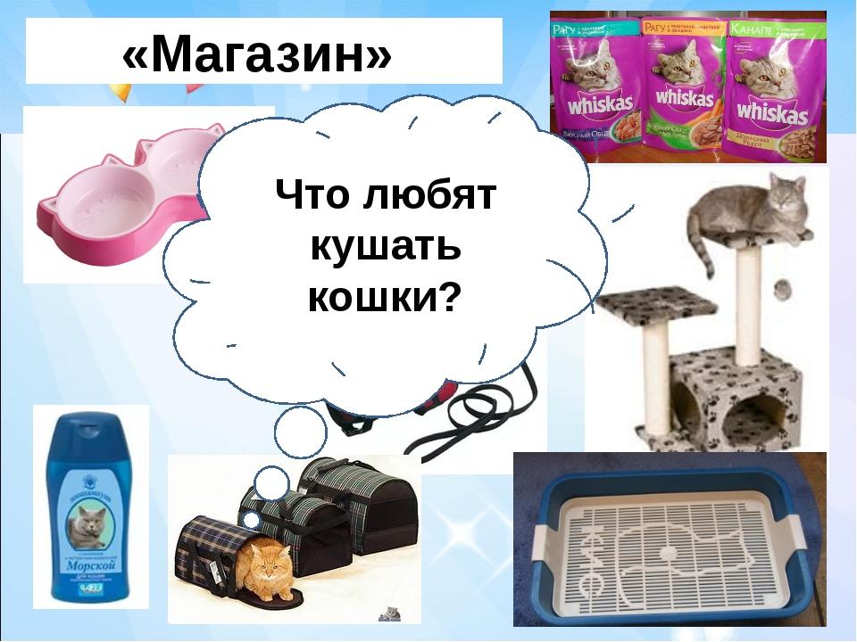 «Магазин» Что любят кушать кошки?