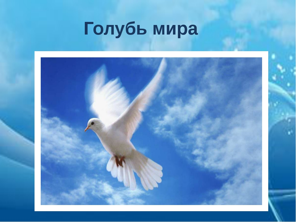 Голубь мира