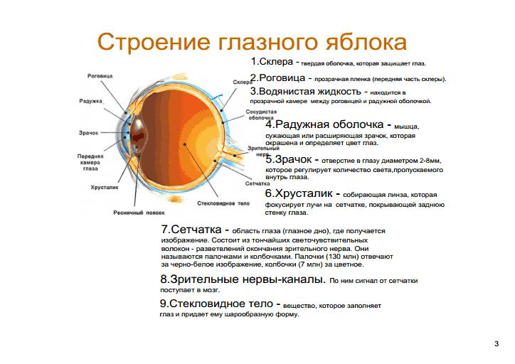 Описание: D:\Загрузки\gview (3).png
