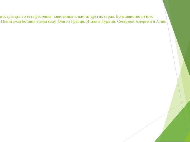 Экзоты – иностранцы, то есть растения, завезенные к нам из других стран. Бол...