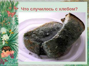 Что случилось с хлебом?