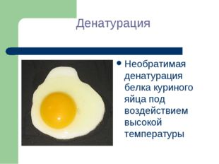 Денатурация Необратимая денатурация белка куриного яйца под воздействием высо