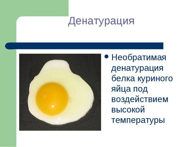 Денатурация Необратимая денатурация белка куриного яйца под воздействием высо...