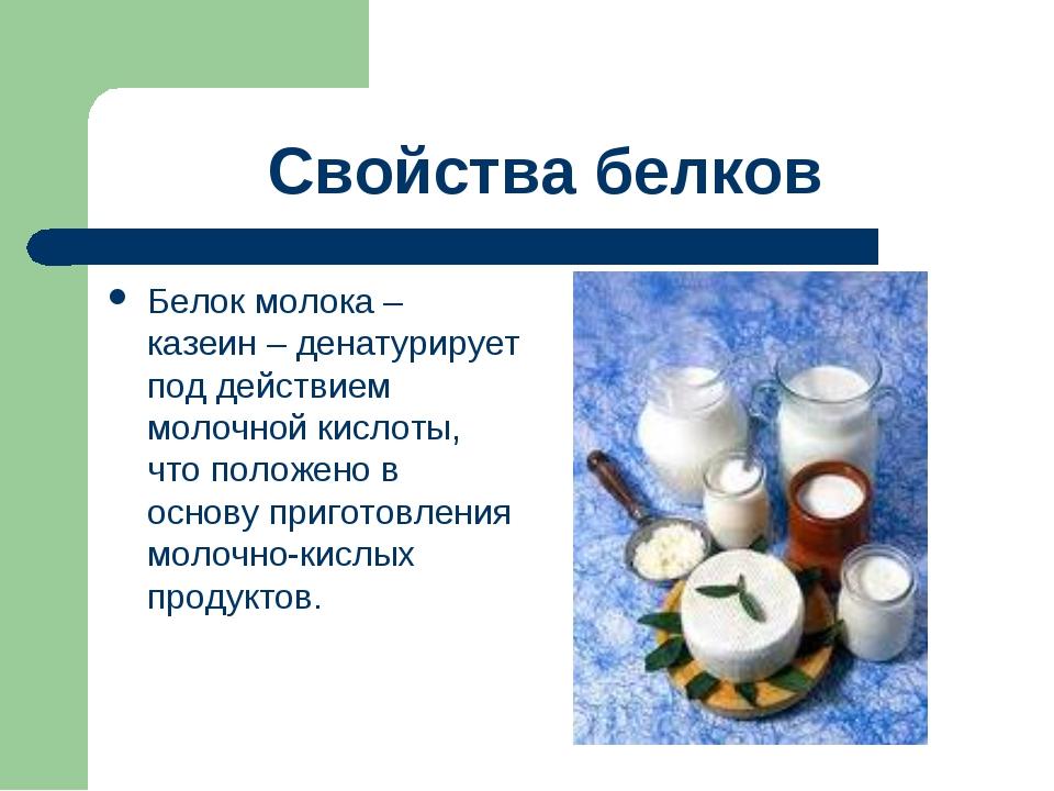 Свойства белков Белок молока – казеин – денатурирует под действием молочной к...