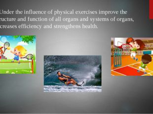 Under the influence of physical exercises improve the structure and function