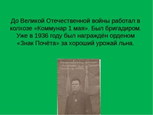 До Великой Отечественной войны работал в колхозе «Коммунар 1 мая». Был бригад