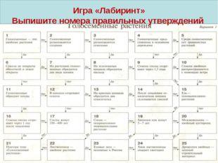 Игра «Лабиринт» Выпишите номера правильных утверждений