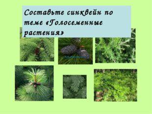 Подумай: что лишнее Составьте синквейн по теме «Голосеменные растения»