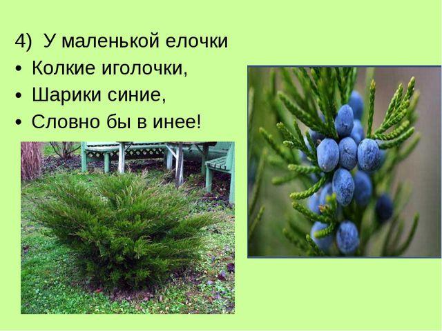 4) У маленькой елочки Колкие иголочки, Шарики синие, Словно бы в инее!