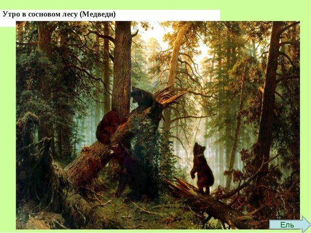 Ель Утро в сосновом лесу (Медведи)