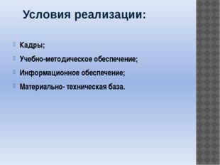 Условия реализации: Кадры; Учебно-методическое обеспечение; Информационное об