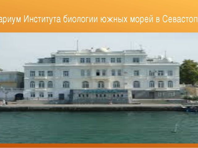 Аквариум Института биологии южных морей в Севастополе