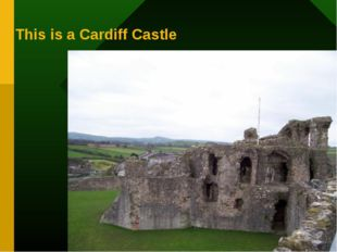 This is a Cardiff Castle