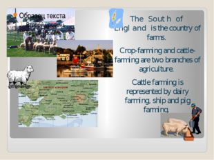 The South of England is the country of farms.  Crop-farming and cattle-farmi