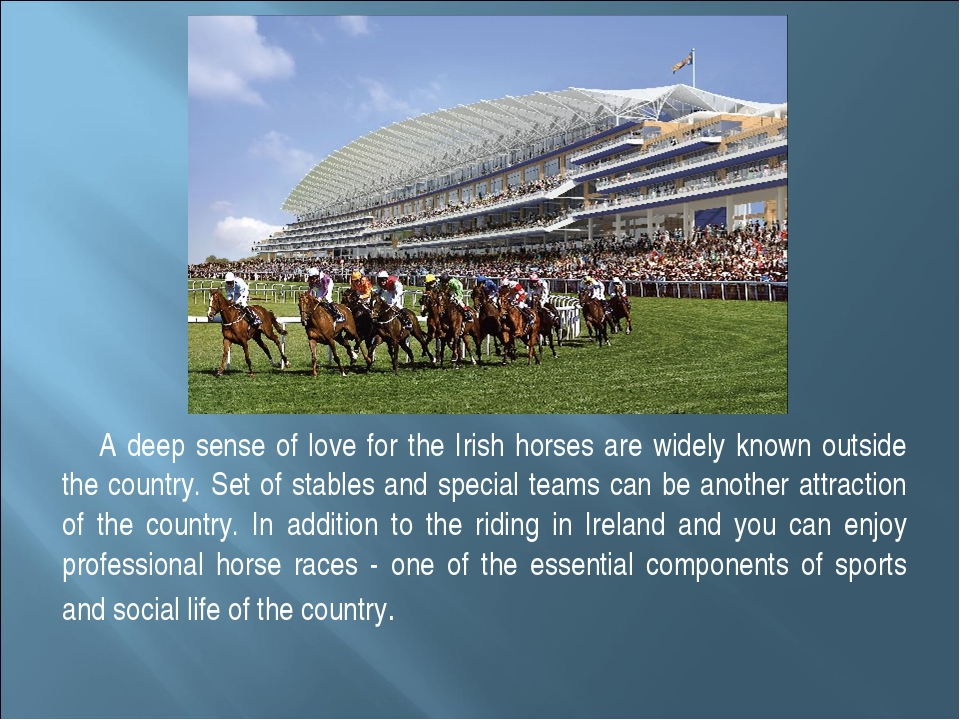 A deep sense of love for the Irish horses are widely known outside the countr...