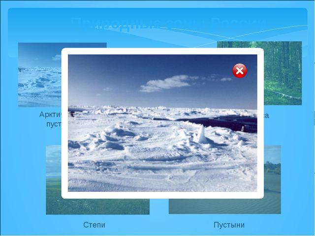 Природные зоны России Арктические пустыни Тундра Леса Степи Пустыни