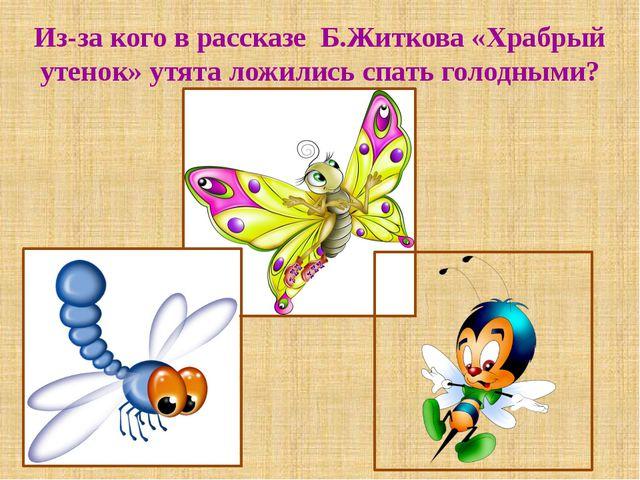 Из-за кого в рассказе Б.Житкова «Храбрый утенок» утята ложились спать голодны...