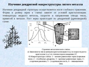 Изучение дендритной макроструктуры литого металла Изучение дендридной структу