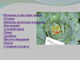 Плодовые и цветущие овощи: -Огурцы -Кабачки, патиссоны и цуккини -Баклажаны