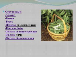Стручковые: -Арахис -Бамия -Горох -Долихос обыкновенный -Конские бобы -Фасол
