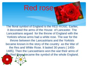 The floral symbol of England is the RED ROSE. Earlier, it decorated the arms