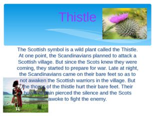 The Scottish symbol is a wild plant called the Thistle. At one point, the Sca