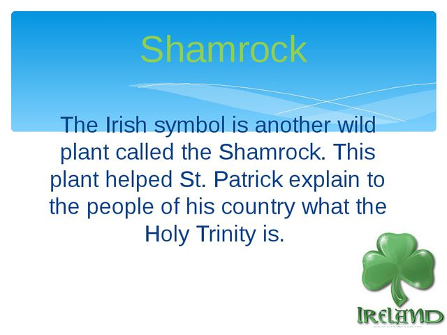 The Irish symbol is another wild plant called the Shamrock. This plant helped...